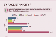thumbnail of the race/ethnicity section of the infographic